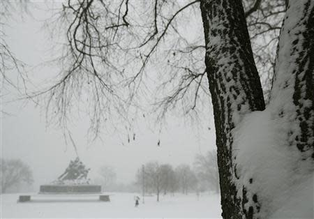 The U.S. Marine Corps War Memorial (L) is seen during blizzard conditions in Arlington, Virginia during a snow storm in the Washington metro area March 3, 2014. REUTERS/Gary Cameron