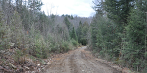 Access Road to La Loutre Property from Highway - 113 km north-west of Montreal