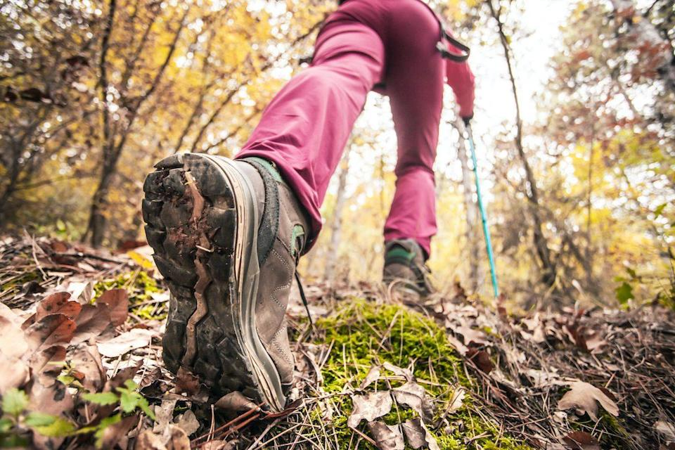 Hiking girl in a mountain. Low angle view of generic sports shoe and legs in a forest. Healthy fitness lifestyle outdoors.