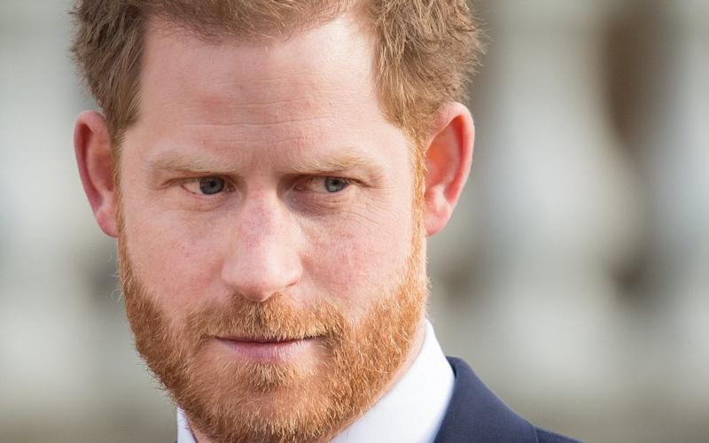 Prince Harry was criticised after arguing that people must acknowledge the Commonwealth's 'uncomfortable' past - Samir Hussein/Getty Images