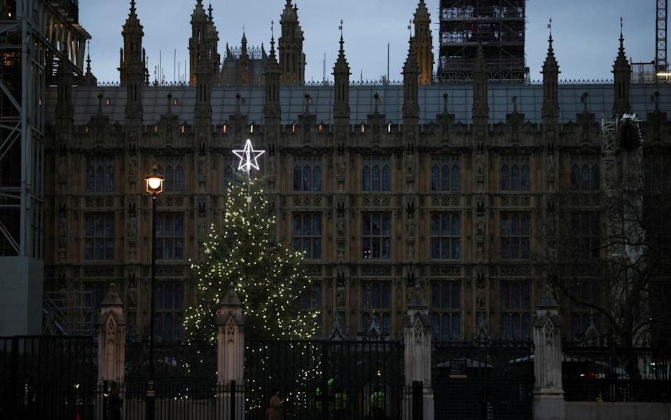 A Christmas tree illuminated by lights can be seen within the grounds of the Houses of Parliament - REUTERS/HENRY NICHOLLS