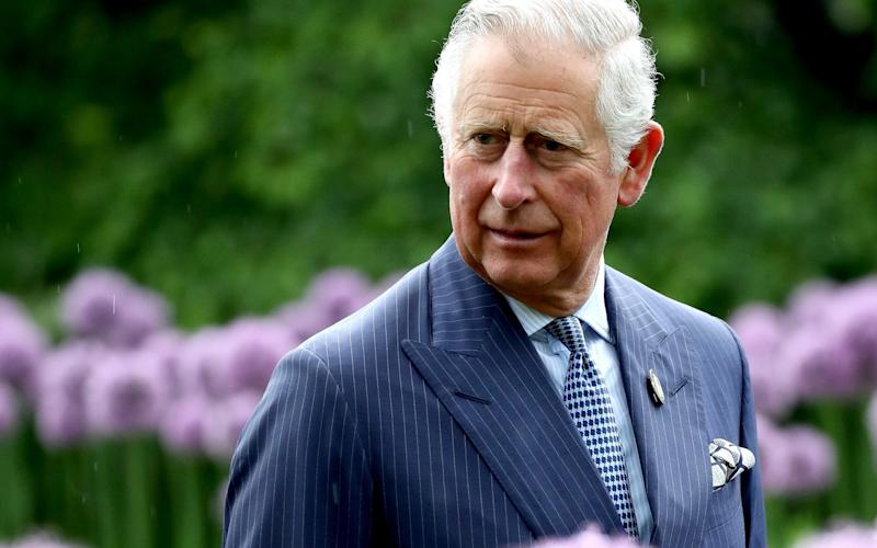 The Prince of Wales has said plastic in the oceans is a growing tragedy  - Getty Images Europe