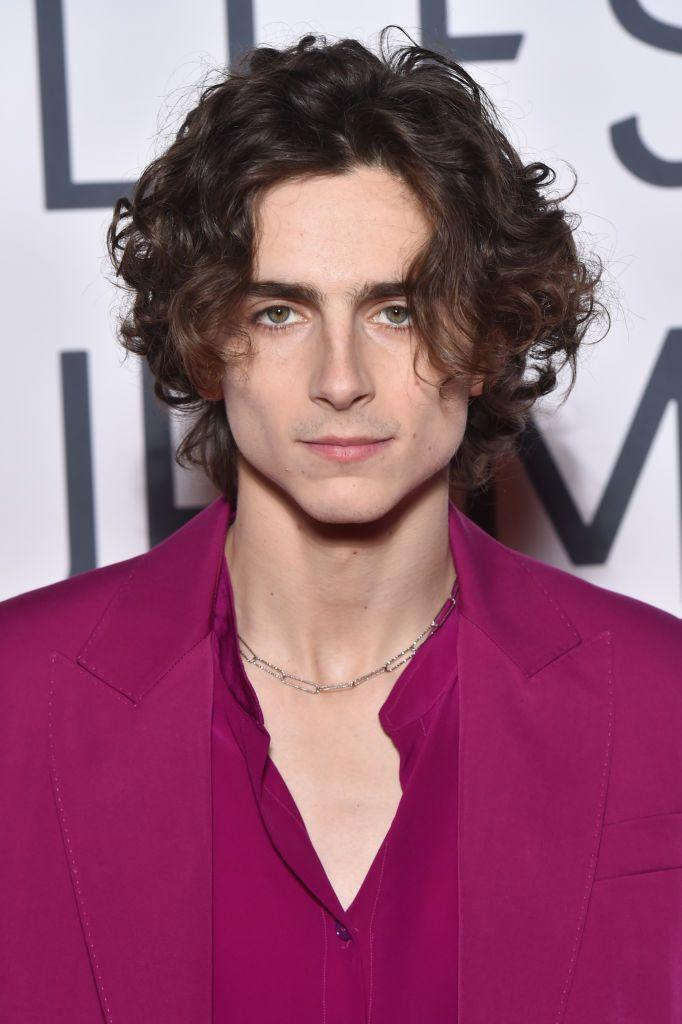 """<p><strong>Nickname:</strong> Timmy</p><p>In a 2017 interview with <a href=""""https://www.vulture.com/2017/11/who-is-call-me-by-your-name-actor-timothe-chalamet.html"""" rel=""""nofollow noopener"""" target=""""_blank"""" data-ylk=""""slk:Vulture"""" class=""""link rapid-noclick-resp"""">Vulture</a>, his Call Me By Your Name co-star Armie Hammer let the moniker slip. """"Timmy is, without a doubt, the most emotionally accessible human being I have ever come across in my life,"""" Hammer said. </p>"""