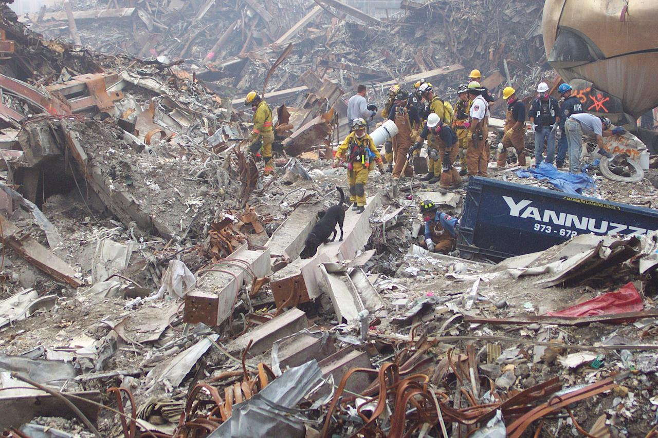 Debra Tosch, executive director of the Search Dog Foundation, and her partner Abby searching at Ground Zero