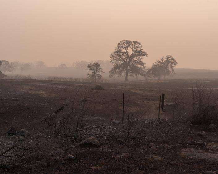 Views from a burned and smokey section of Skyway Road leading to Paradise. (Photo: Cayce Clifford for HuffPost)
