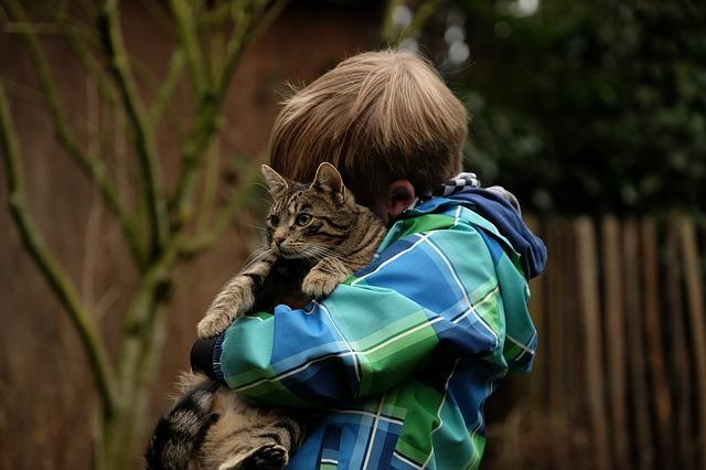 A reassuring hug. Photo: Pixabay