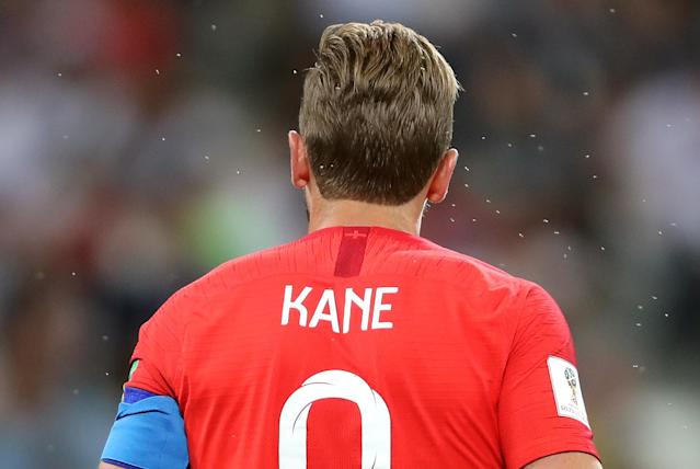 <p>England's Harry Kane surrounded by insects during the FIFA World Cup Group G match at The Volgograd Arena, Volgograd. (Photo by Owen Humphreys/PA Images via Getty Images) </p>