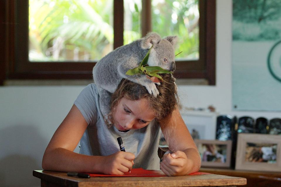 <p>If the show makes one thing clear, it's that a little passion can go a <em>long</em> way. When Izzy's not in school, she's constantly thinking about how to help koalas, whether she's testing out trees to climb or trying to get one of her residents to drink milk. Always eager to come to a pragmatic solution, there's no denying that Izzy is one driven 11-year-old. Discussing what your kids are passionate about might inspire them to double-down on their favorite hobbies.</p>