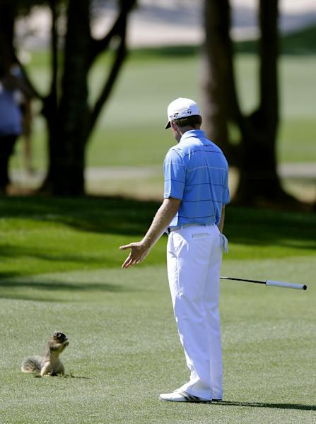 Justin Leonard gestures as he looks at a squirrel on the 10th fairway during the third round of the Tampa Bay Championship golf tournament Saturday, March 16, 2013, in Palm Harbor, Fla. (AP Photo/Chris O'Meara)