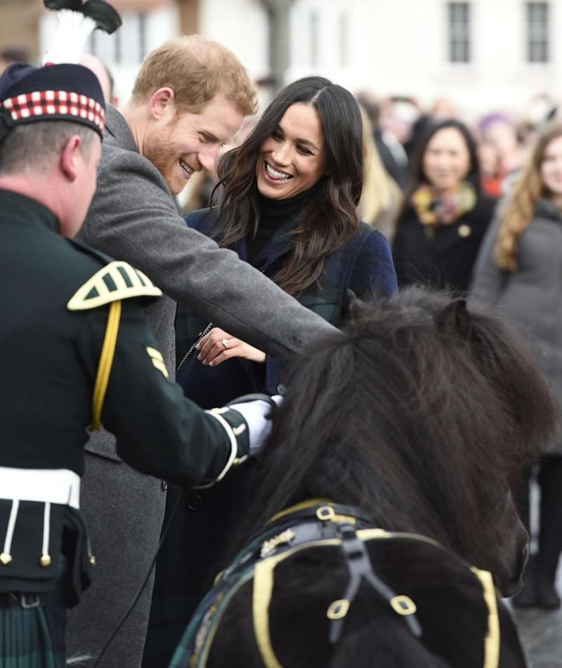 It slightly nipped Prince Harry on the hand with Meghan giggling at what happened. Photo: Getty Images