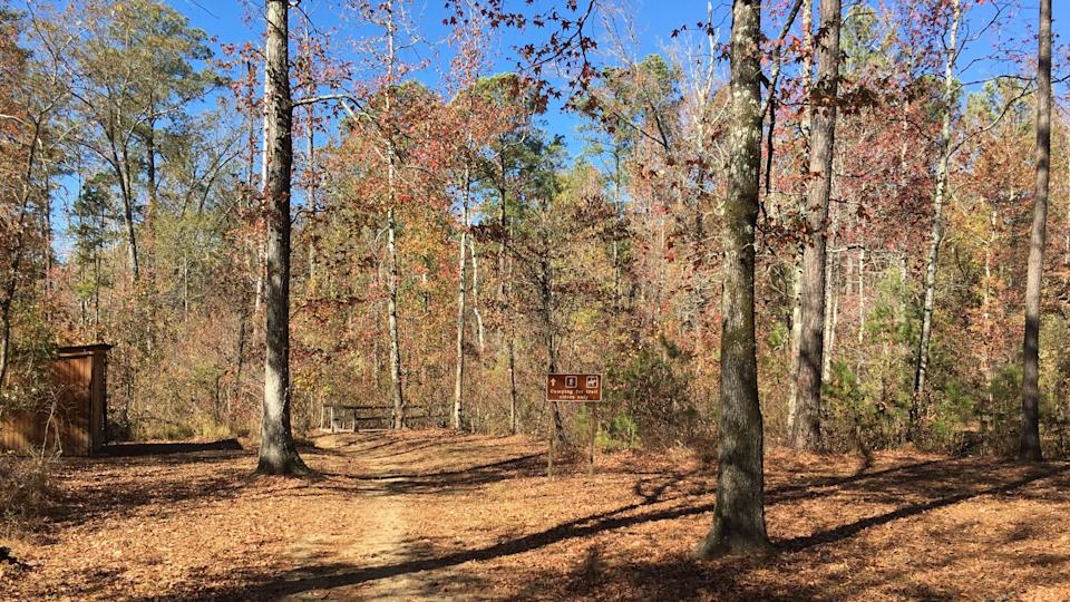 Witch Dance Horse Trail trailhead along the Natchez Trace Parkway - Image.
