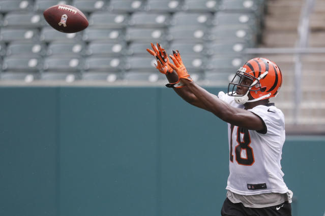 Fantasy owners, you want this guy. A.J. Green is as good as it gets. (AP Photo/John Minchillo)