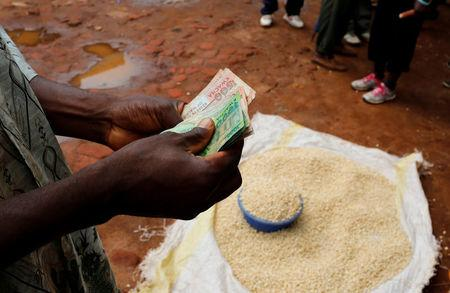 FILE PHOTO: A Malawian trader counts money as he sells maize near the capital Lilongwe