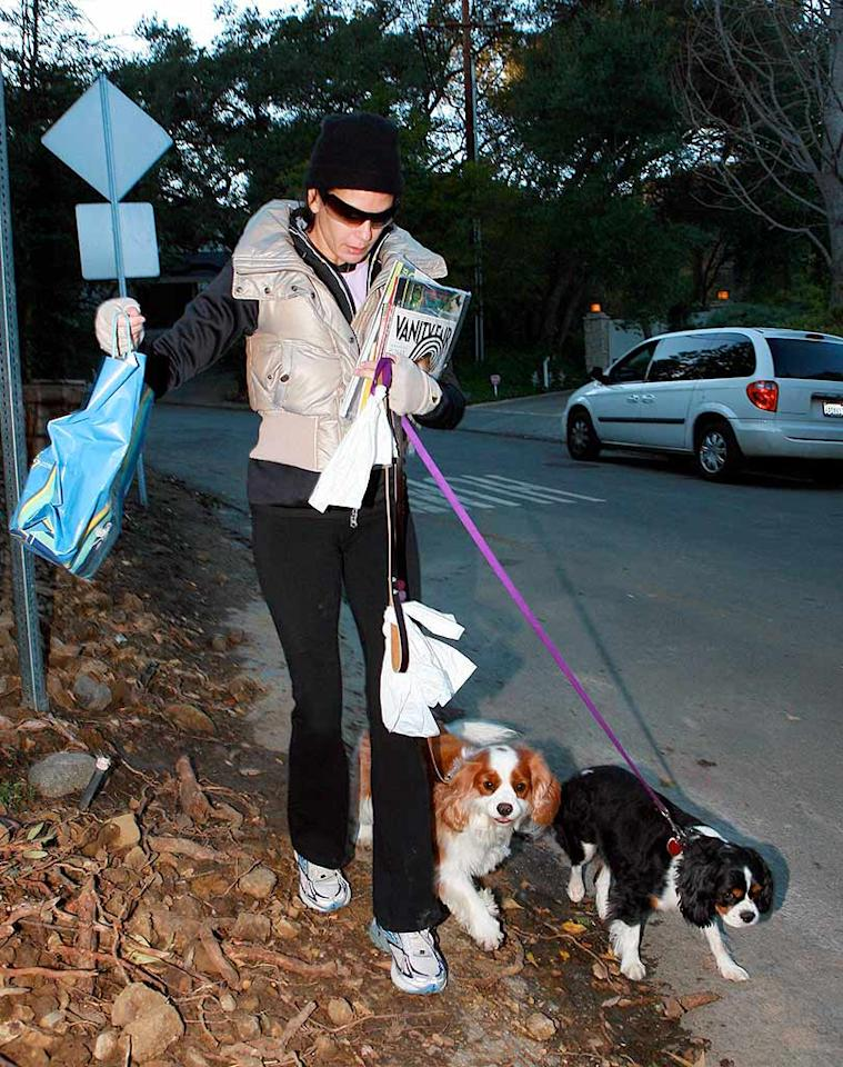 "Teri Hatcher walks her dogs in a champagne-colored vest and knit cap. MWD/<a href=""http://www.x17online.com"" target=""new"">X17 Online</a> - December 8, 2007"