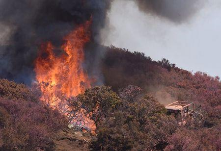 A USFS bulldozer cuts a line through vegetation to create a safety line below West Camino Cielo while fighting the Whittier Fire near Santa Barbara