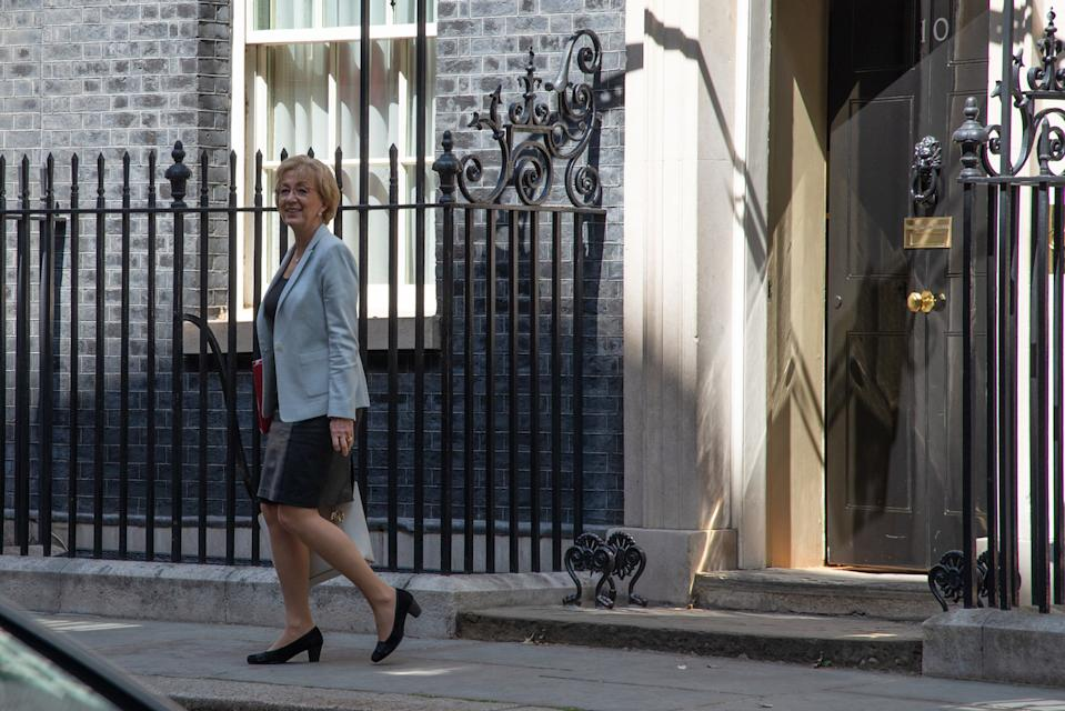 Could Andrea Leadsom be moving into Number 10? (Picture: PA)