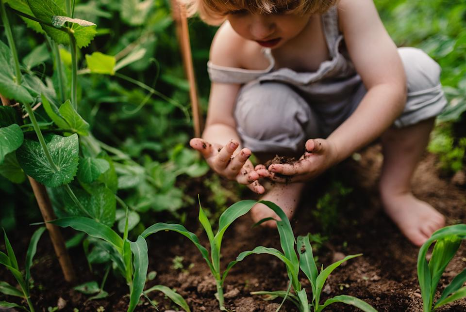 A little boy in the garden, playying with soil. (Photo: Halfpoint Images via Getty Images)