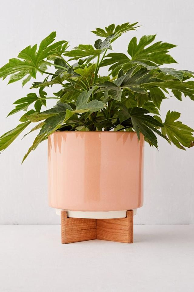 """<p>This <a href=""""https://www.popsugar.com/buy/Cecily-10-Planter-Stand-556472?p_name=Cecily%2010%22%20Planter%20%2B%20Stand&retailer=urbanoutfitters.com&pid=556472&price=59&evar1=casa%3Aus&evar9=47304099&evar98=https%3A%2F%2Fwww.popsugar.com%2Fhome%2Fphoto-gallery%2F47304099%2Fimage%2F47304280%2FCecily-10-Planter-Stand&list1=shopping%2Chome%20decor%2Cdecor%20shopping%2Chome%20shopping&prop13=api&pdata=1"""" rel=""""nofollow"""" data-shoppable-link=""""1"""" target=""""_blank"""" class=""""ga-track"""" data-ga-category=""""Related"""" data-ga-label=""""https://www.urbanoutfitters.com/shop/cecily-10-planter-stand?category=apartment-room-decor&amp;color=065&amp;type=REGULAR&amp;size=ONE%20SIZE&amp;quantity=1"""" data-ga-action=""""In-Line Links"""">Cecily 10"""" Planter + Stand</a> ($59) comes in two different colors.</p>"""