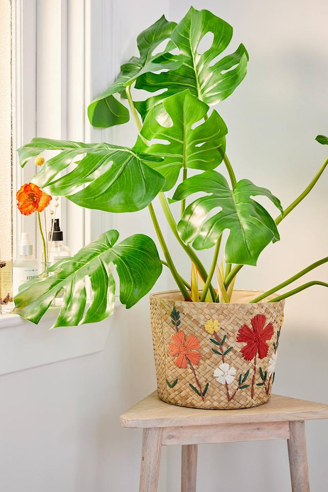 "<p>The <a href=""https://www.popsugar.com/buy/Garden-Planter-Basket-511272?p_name=Garden%20Planter%20Basket&retailer=urbanoutfitters.com&pid=511272&price=40&evar1=casa%3Aus&evar9=46077423&evar98=https%3A%2F%2Fwww.popsugar.com%2Fhome%2Fphoto-gallery%2F46077423%2Fimage%2F46848142%2FGarden-Planter-Basket&list1=shopping%2Cgifts%2Choliday%2Cgift%20guide%2Cplants%2Cgarden%2Cgardening%2Cgifts%20for%20women&prop13=mobile&pdata=1"" rel=""nofollow"" data-shoppable-link=""1"" target=""_blank"" class=""ga-track"" data-ga-category=""Related"" data-ga-label=""https://www.urbanoutfitters.com/shop/garden-planter-basket?category=SEARCHRESULTS&amp;color=011"" data-ga-action=""In-Line Links"">Garden Planter Basket</a> ($40, originally $49) is an adorable basket to put large plants in. </p>"