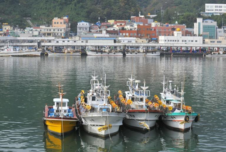 Fishing boats anchored at the main port on South Korea's Ulleung Island, in the Sea of Japan, on November 7, 2008
