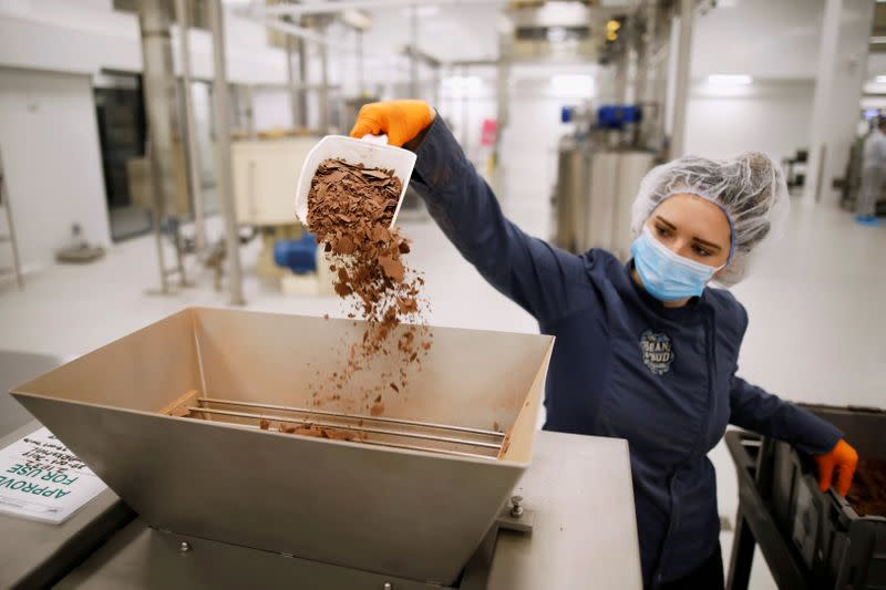 FILE PHOTO: A worker shakes cocoa nibs into a machine during a tour at a Canopy Growth facility