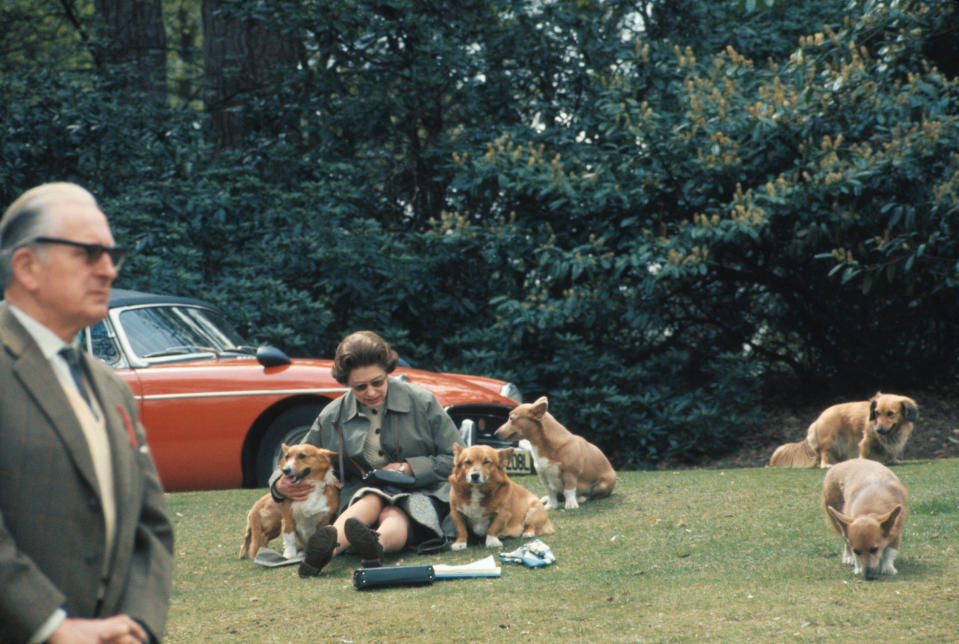 Queen Elizabeth II surrounded by her dogs
