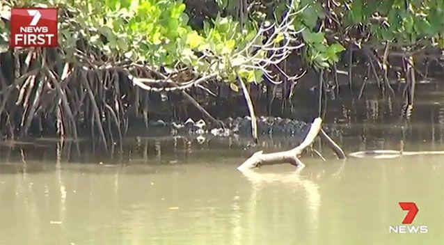 This croc was spotted in the area on Friday. Source: 7 News