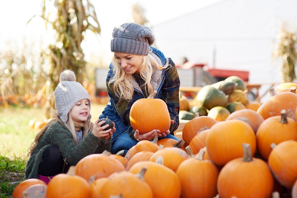 "<p>When you think of the most fun and very best family Halloween activities, memories of trick-or-treating around the neighborhood with your crew—all decked out in the <a href=""https://www.countryliving.com/diy-crafts/g1360/halloween-costumes-for-kids/"" rel=""nofollow noopener"" target=""_blank"" data-ylk=""slk:best Halloween costumes for kids"" class=""link rapid-noclick-resp"">best Halloween costumes for kids</a>, of course—likely come to mind. Visiting the nearest Instagram-worthy pumpkin patch on a crisp, fall day in search of the perfect specimen for the most creative <a href=""https://www.countryliving.com/diy-crafts/g279/pumpkin-carving-ideas/"" rel=""nofollow noopener"" target=""_blank"" data-ylk=""slk:pumpkin carving ideas"" class=""link rapid-noclick-resp"">pumpkin carving ideas</a>—most definitely at the top of the list. And let's not forget making (and eating!) the best, most delectable <a href=""https://www.countryliving.com/food-drinks/g1194/halloween-treats/"" rel=""nofollow noopener"" target=""_blank"" data-ylk=""slk:Halloween treats"" class=""link rapid-noclick-resp"">Halloween treats</a>—So. Much. Sugar.<br> <br>In addition to these more traditional Halloween activities, we've rounded up a long list of super fun and creatively satisfying things to try with your family throughout October this year. Got kids who love a scary-good craft or two? Make slime, paint rocks with spooky and funny faces, or paint pumpkins to set out on the front porch. ""Spook"" your neighbors by leaving a goodie bag filled with tricks and treats on their doorstep, and encourage them to do the same. <br><br>From Halloween party ideas (even if it's just your immediate kin) to easy games for school to a movie night at home featuring the best <a href=""https://www.countryliving.com/life/g21098784/kids-halloween-movies-on-netflix/"" rel=""nofollow noopener"" target=""_blank"" data-ylk=""slk:kids Halloween movies on Netflix"" class=""link rapid-noclick-resp"">kids Halloween movies on Netflix</a>, here are some surefire activities to get into the Halloween spirit. </p>"
