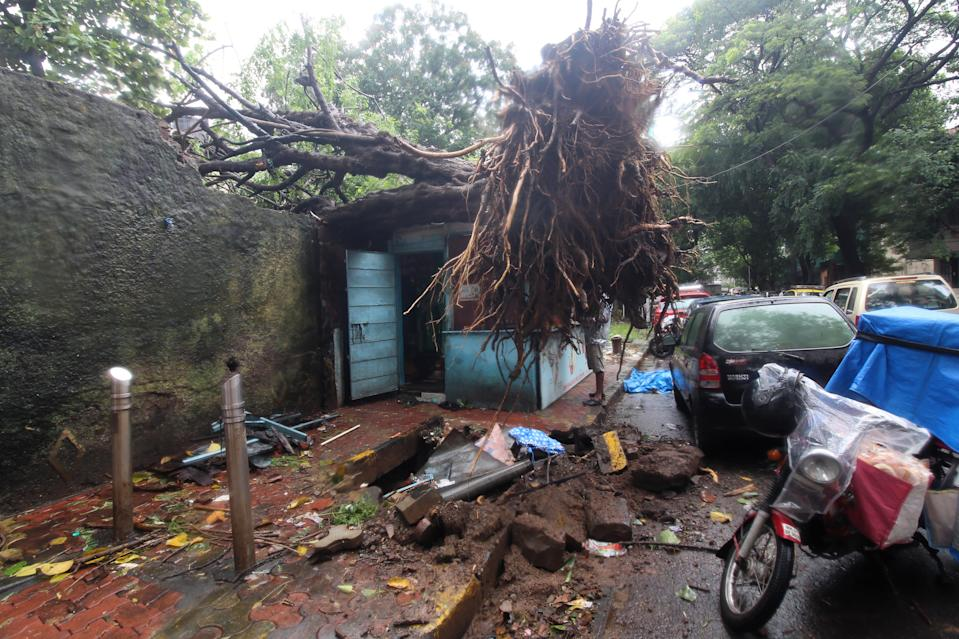 A tree is seen fallen over a shop during heavy rains in Mumbai, India on August 04, 2020. (Photo by Himanshu Bhatt/NurPhoto via Getty Images)