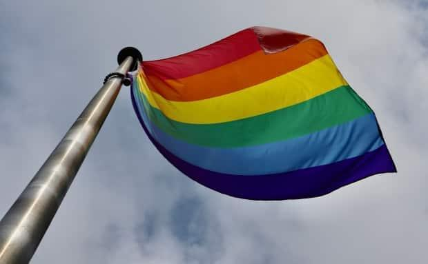 Many communities across Canada mark June as Pride month to signal their support for people from the LGBTQ community.  (Jane Robertson/CBC - image credit)