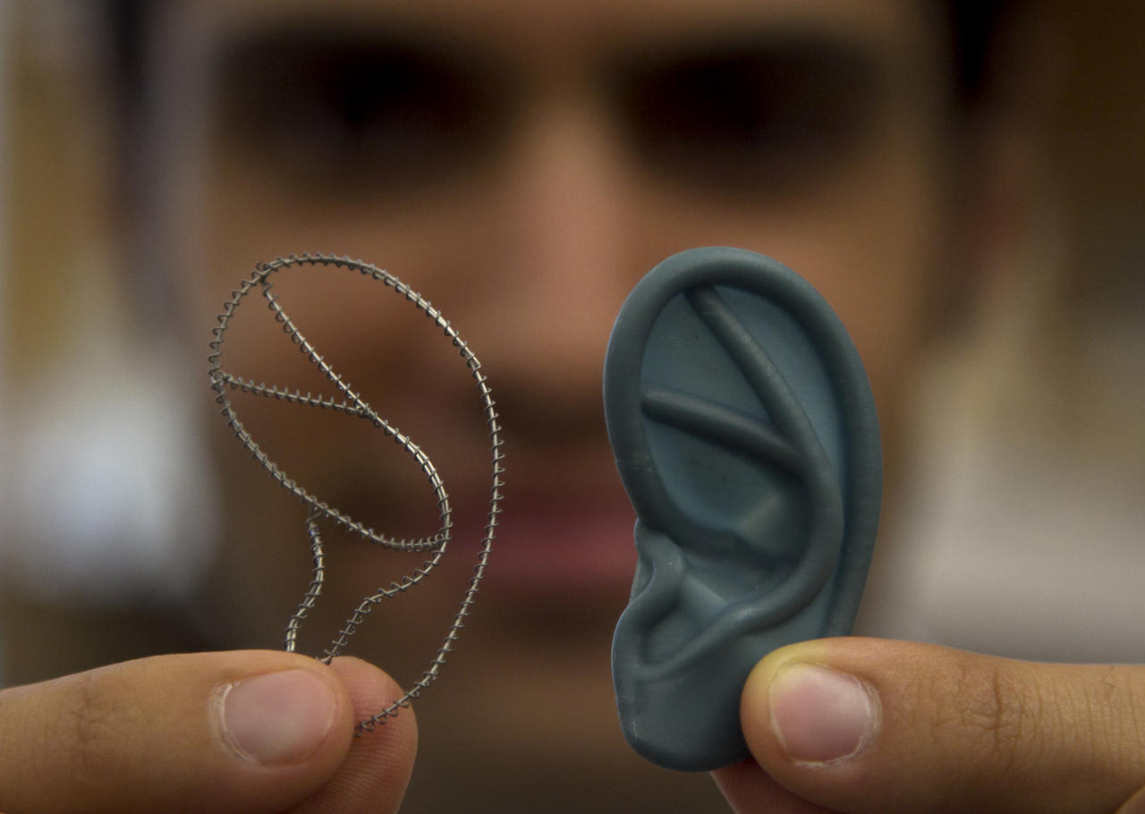 In this Monday, July 2, 2012 photo Tom Cervantes, of Boston, a research engineer at the Laboratory for Tissue Engineering and Organ Fabrication at Massachusetts General Hospital, displays a titanium frame designed for the reconstruction of a human ear, left, and a three dimensional plastic ear model, right, at the lab, in Boston. Scientists are growing ears, bone and skin in the lab, and doctors are planning more face transplants and other extreme plastic surgeries. Around the country, the most advanced medical tools that exist are now being deployed to help America's newest veterans and wounded troops. (AP Photo/Steven Senne)