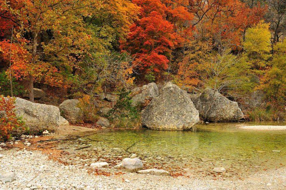 """<p>This destination looks a lot less like Texas and more like the Midwest, as <a href=""""https://www.tripadvisor.com/Attraction_Review-g56816-d109386-Reviews-Lost_Maples_State_Natural_Area-Vanderpool_Bandera_County_Texas.html"""" rel=""""nofollow noopener"""" target=""""_blank"""" data-ylk=""""slk:Lost Maples State Natural Area"""" class=""""link rapid-noclick-resp"""">Lost Maples State Natural Area</a> actually has few desert views. Instead, it unexpectedly features groves upon groves of maple trees, which come alive during autumn.</p><p><br><a class=""""link rapid-noclick-resp"""" href=""""https://go.redirectingat.com?id=74968X1596630&url=https%3A%2F%2Fwww.tripadvisor.com%2FAttraction_Review-g56816-d109386-Reviews-Lost_Maples_State_Natural_Area-Vanderpool_Bandera_County_Texas.html&sref=https%3A%2F%2Fwww.countryliving.com%2Flife%2Ftravel%2Fg24487731%2Fbest-hikes-in-the-us%2F"""" rel=""""nofollow noopener"""" target=""""_blank"""" data-ylk=""""slk:PLAN YOUR HIKE"""">PLAN YOUR HIKE</a></p>"""