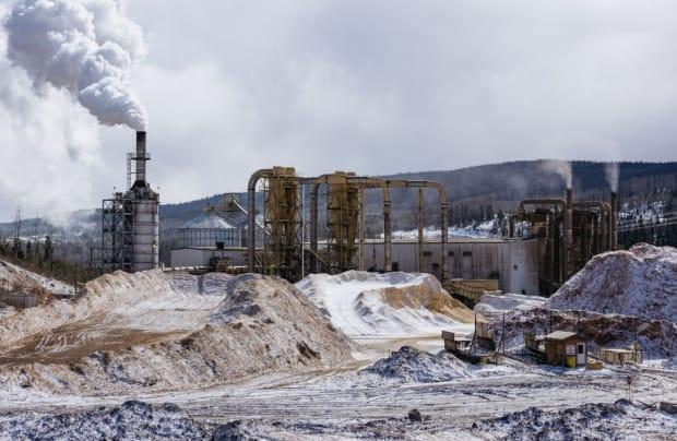 This wood pellet plant in Burns Lake is owned by Pinnacle. The CCPA report says photographs of logs piled at such plants contradict the pellet industry's assertions that it uses waste wood fibre to produce pellets.