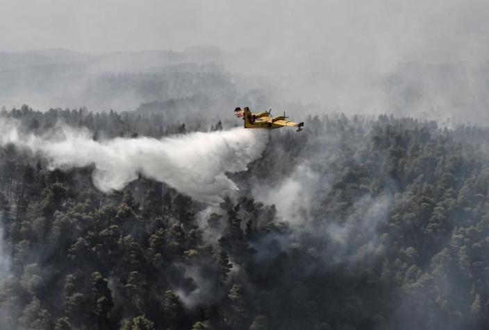 Firefighters managed to contain the fire in a ravine near the village of Platana, backed by nearly 100 vehicles, nine helicopters and nine planes (AFP Photo/LOUISA GOULIAMAKI)