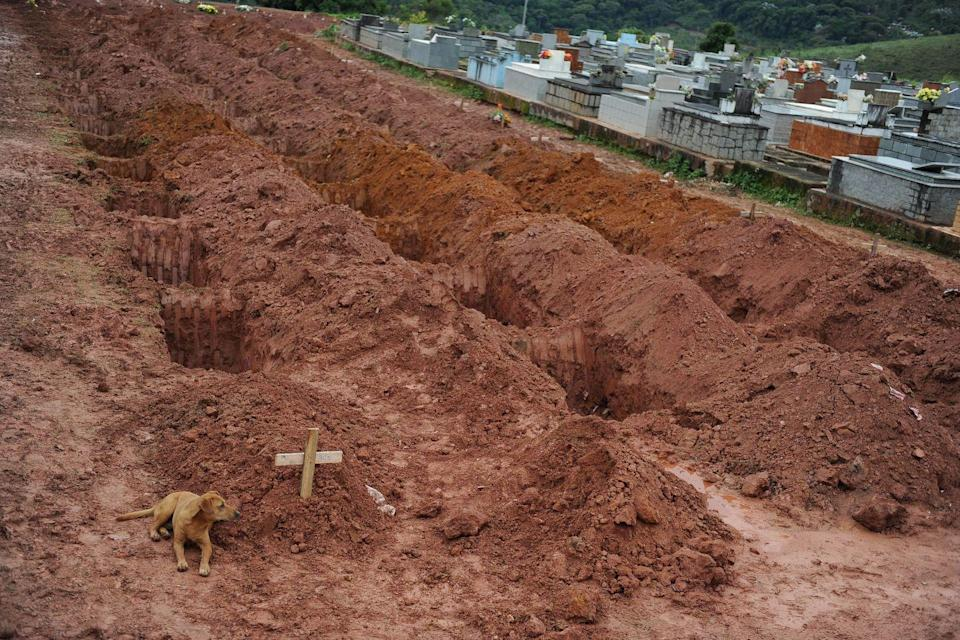 "<p>A dog sits for the second consecutive day next to the grave of Cristina Maria Cesario Santana at a cemetery in Teresopolis, near Rio de Janeiro, on January 15, 2011. Cristina Maria died in the week's catastrophic landslides in Brazil, which claimed some 550 lives in the country's worst flood disaster on record. </p><p><strong>RELATED: <a href=""https://www.redbookmag.com/life/pets/a49379/boy-meets-dog-with-same-skin-condition/"" rel=""nofollow noopener"" target=""_blank"" data-ylk=""slk:A Boy Befriended a Dog With the Same Rare Skin Condition As Him"" class=""link rapid-noclick-resp"">A Boy Befriended a Dog With the Same Rare Skin Condition As Him</a></strong></p>"