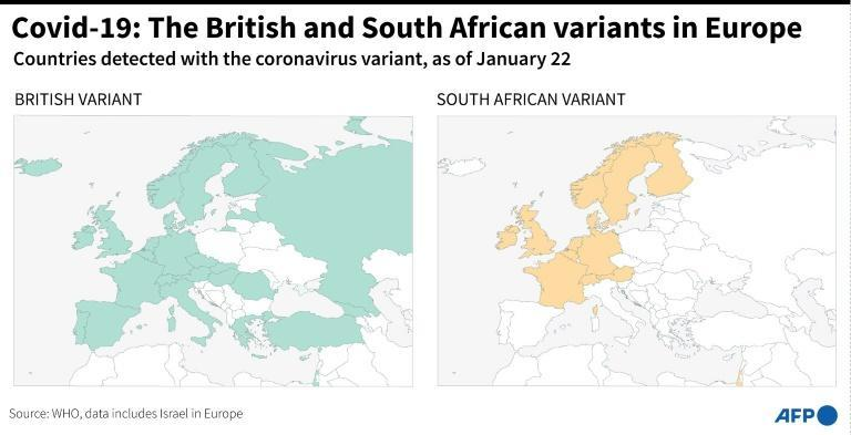 Covid-19: The British and South African variants in Europe