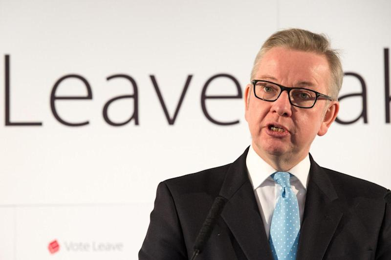 Michael Gove was the co-chairman of the official Vote Leave campaign (Getty Images)