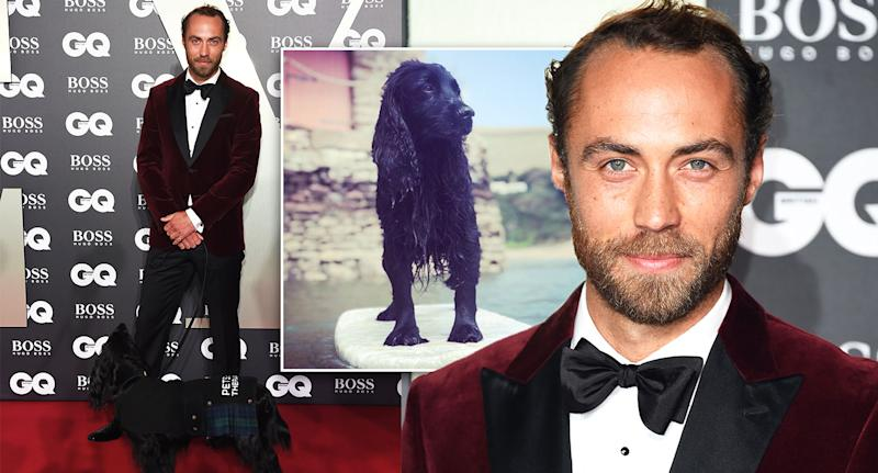 James Middleton took his therapy dog Ella to the GQ Awards. [Photo: Getty/PA]