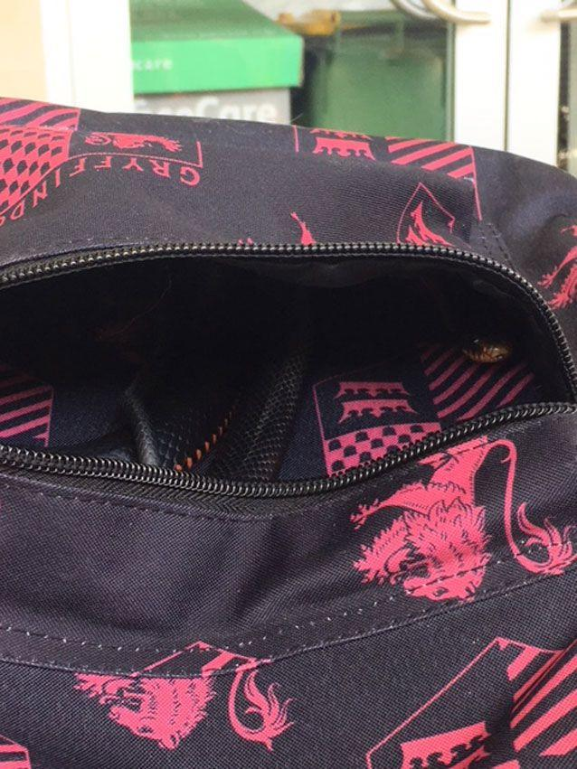 The snake was hiding in a schoolgirl's bag. Source: Snake Catchers Brisbane, Ipswich, Logan and Gold Coast