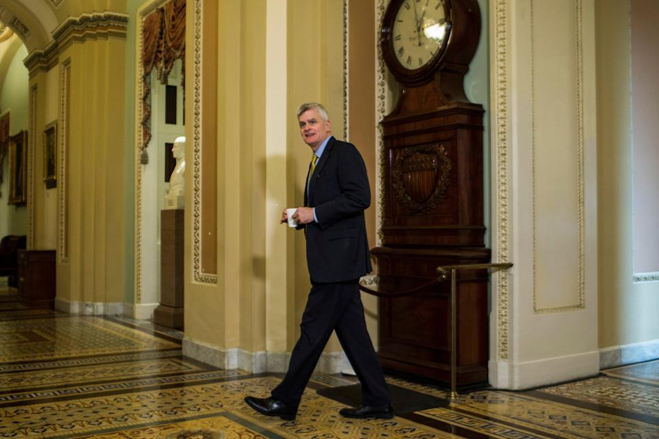 Bill Cassidy says Democrats made 'compelling argument' (Getty Images)