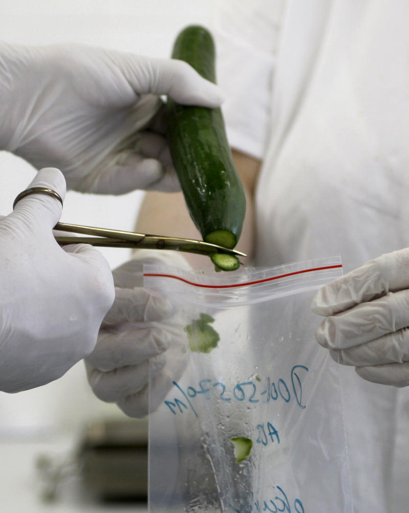 Chief of the laboratory in research into the Escherichia Coli bacterium at the Brno research institute  Pavel Alexa, left, and his assistant Gabriela Glocknerova, right, take samples from a cucumber for a molecular biological test in Brno, Czech Republic, Wednesday, June 1, 2011. The ongoing outbreak of E. coli has claimed 16 people and around 1500 infected across Europe. The laboratory is testing the vegetables for the Czech market. (AP Photo/Petr David Josek)