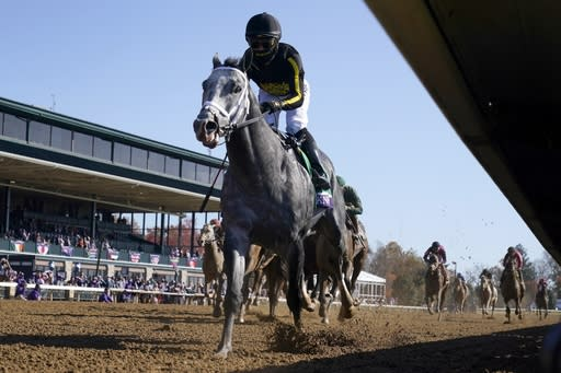 FILE - Joel Rosario rides Knicks Go to win the Breeders' Cup Dirt Mile horse race at Keeneland Race Course, in Lexington, Ky., in this Saturday, Nov. 7, 2020, file photo. Knicks Go is the likely favorite for Saturdays, Jan. 23, 2021, $3 million Pegasus World Cup Invitational at Gulfstream Park. (AP Photo/Darron Cummings, File)