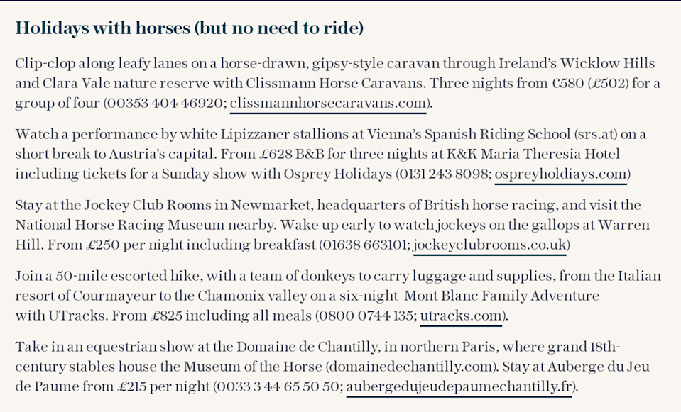 Holidays with horses (but no need to ride)