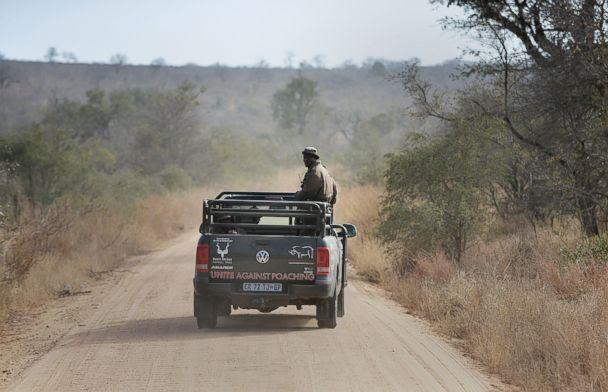 PHOTO: In this file photo park rangers patrol a section of Kruger National Park scouting for possible poachers on July 31, 2014. (File photo/AFP/Getty Images)