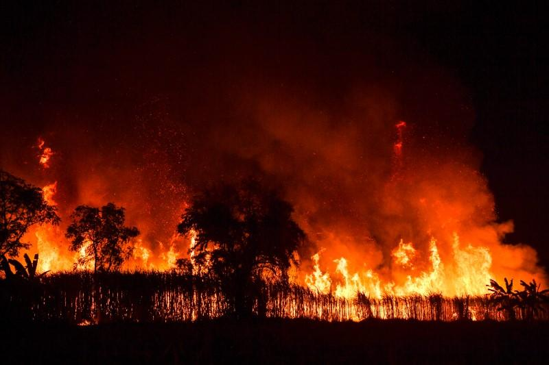 Sugar cane field is engulfed in flames at night as local growers try to avoid arrest by authorities who banned on the practice to curb smog in Suphan Buri province