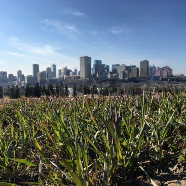 A heat warning has been issued for Edmonton, St. Albert and Sherwood Park.  (John Robertson/CBC - image credit)