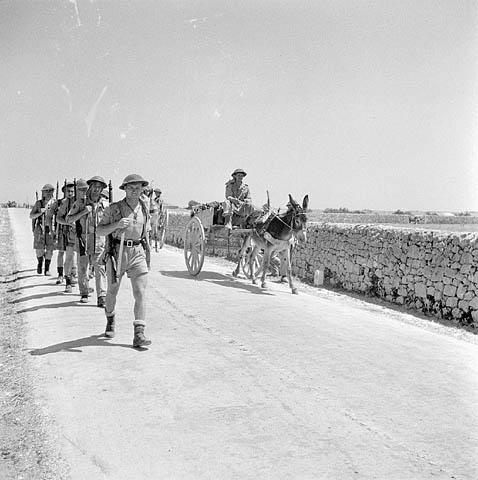 <p>Photographer: Royal, Frank.<br /> Location: Modica, Italy (vicinity)<br /> Date: July 12, 1943<br /> Credit: Library and Archives Canada </p>