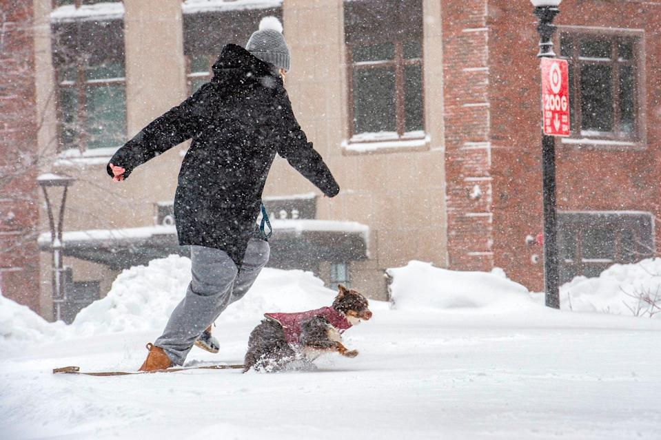 <p>A woman and her dog in Boston take advantage of the fresh powder during playtime.</p>