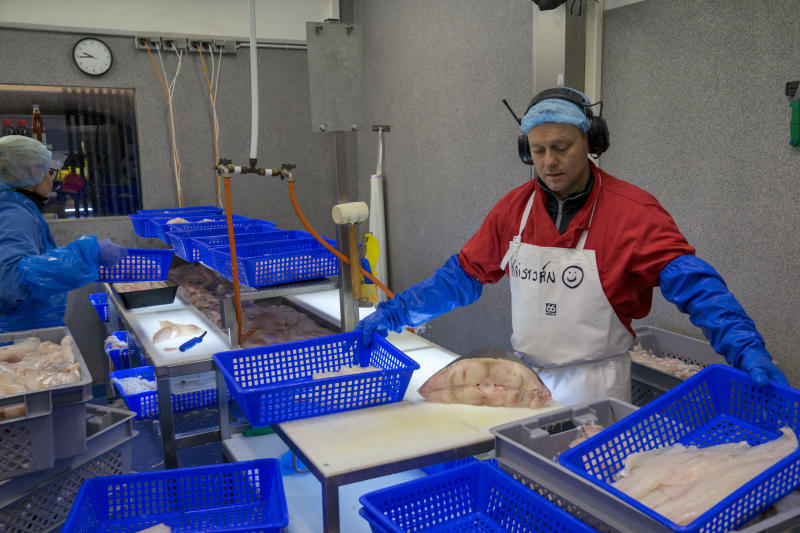 In this photo taken Monday Oct. 28, 2019, fishmonger Kristjan Asgeirsson is seen at work in Reykjavik, Iceland. Asgeirsson lost $68,000 in an online scam. The people of Iceland, who speak a unique dialect of Old Norse, are no longer protected from online fraud because of their linguistic isolation. Modern computer programs, sophisticated auto-translation systems and increased procession speed, has made residents much more vulnerable to computer scams. Recent scams have amounted to the largest thefts the island nation has ever seen. (AP Photo/Egill Bjarnason)