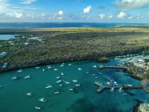 Galapagos authorities are desperately hoping for a revival of the vital tourism industry -- the main engine of the local economy -- once visitors are allowed to fly in again